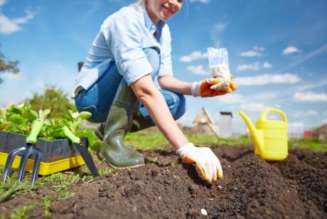 Няколко метода как да подобрите почвата в градината