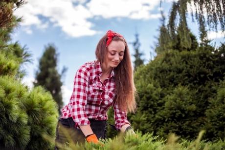 Ето защо градинарството е здравословно